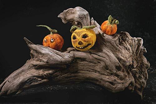 Conjunto de decoración de calabaza aguja de calabaza de fieltro Calabaza de Halloween cara Otoño...