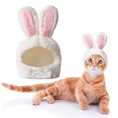 Disfraz Gato, Disfraz de Conejo de Gato de tamaño Ajustable, Disfraz de Cachorro de Pascua, Disfraz...