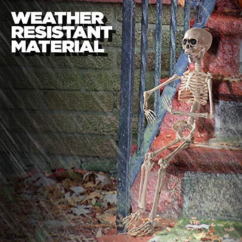 Prextex.com Esqueleto Que Puede Hacer Poses para Halloween 60 cm (20 Pulgadas) - Esqueleto de Cuerpo...