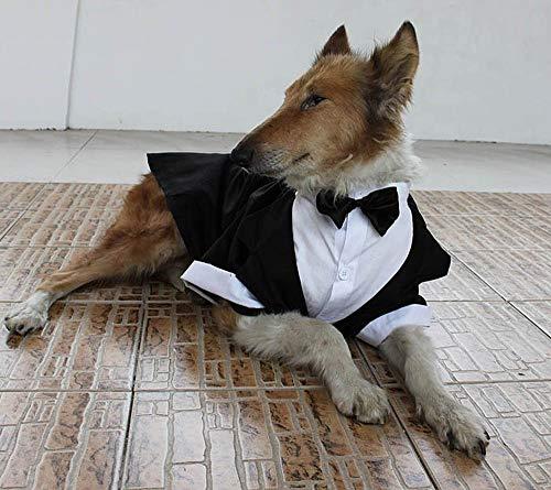 Yongqin Traje de boda para perro, disfraz de esmoquin para perro grande, traje formal de fiesta,...