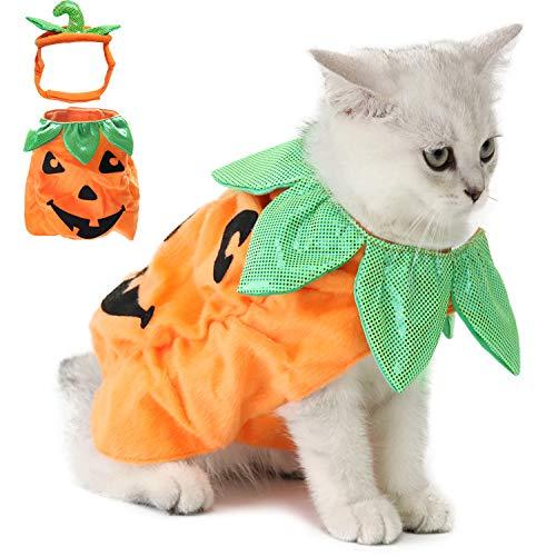 Legendog - Disfraz de gato y perro para Halloween con diseño de calabaza - Divertido traje para...
