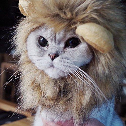 Bello Luna Peluquería de cabello para perros pequeños y gatos, Peluca de león Peluca para...