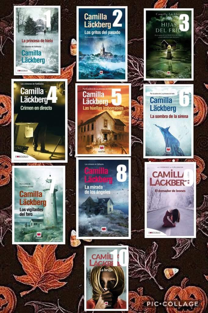 serie Fjällbacka, Erica Falck, Patrik Hedström, libros CAMILLA LÄCKBERG,